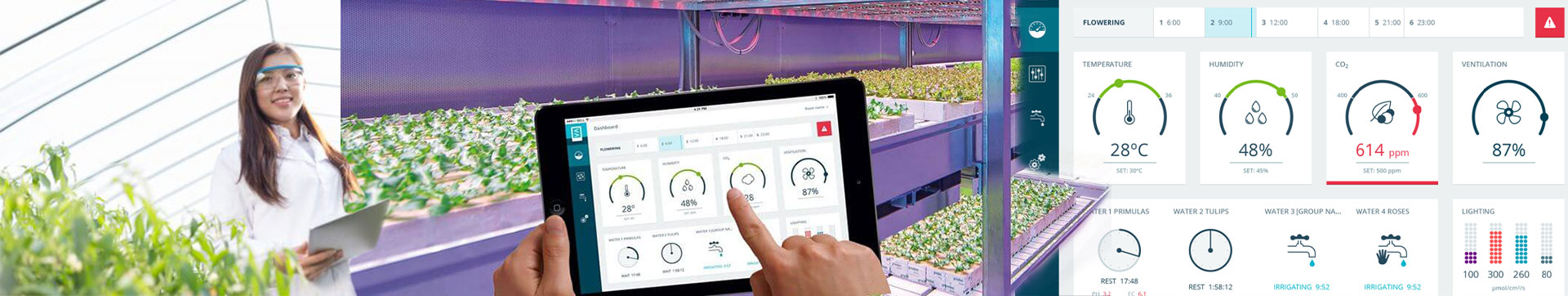 Priva Greenhouse Automation